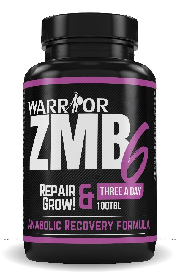 ZMB6 tablety 100 tab