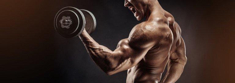 Pamätujú si naše svaly? Svalová pamäť a jej funkcia